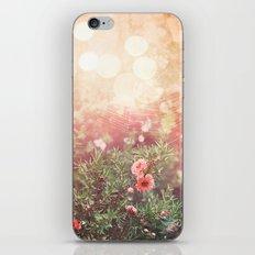 Enchanted Spiderweb iPhone & iPod Skin