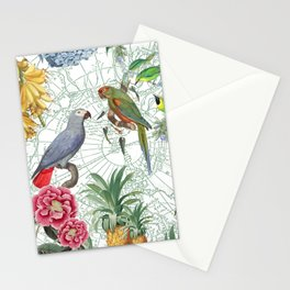 Birds on the Map Stationery Cards