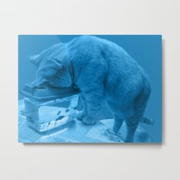 bad cat catching fish Metal Print