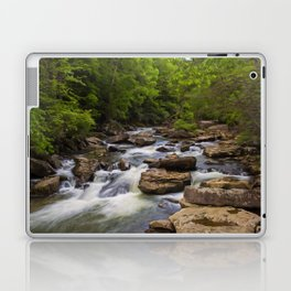 Glade Creek Laptop & iPad Skin