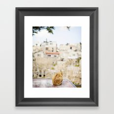 Cat Overlooking Ancient Ruins, Israel Framed Art Print