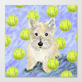Miss Caroline the Cairn Terrier is Obsessed About Fetching Tennis Balls Canvas Print
