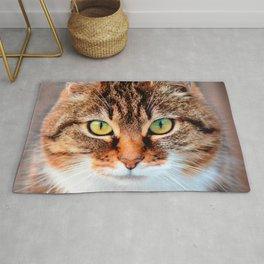 Portrait of Manx Cat Green-Eyed Rug