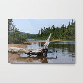Peacefull Lake in Canada Metal Print
