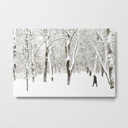 Winter walk Metal Print