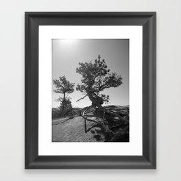 Dancing tree Framed Art Print