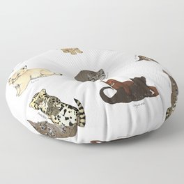 Kittens Worldwide Floor Pillow