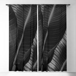 Banana leaf allure - night Blackout Curtain