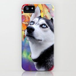 Dreaming Husky iPhone Case