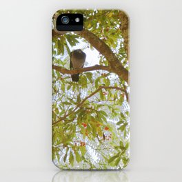 Incense tree with pigeons iPhone Case