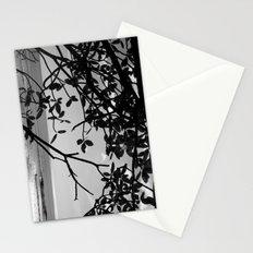 Popoyo Stationery Cards