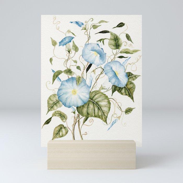 Morning Glories Mini Art Print
