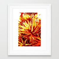 cacti Framed Art Prints featuring CACTI by Charles Harry Mackenzie