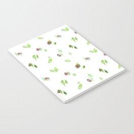 Ladybugs Notebook