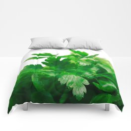 Parsley Comforters