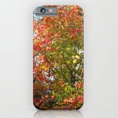 Autumn Leaves I iPhone 6s Slim Case