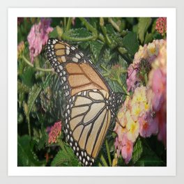 Monarch Butterfly Abstract Art Print
