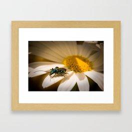 Bellavista Margherita Framed Art Print