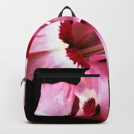 The Gladiola In Pink  Backpack