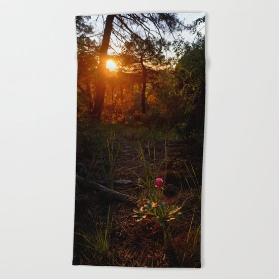 """""""Flower Into The Woods"""" Happy Peony looking for the last sun.. Beach Towel"""