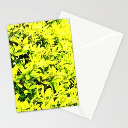 Holly Sunshine to Brighten Up Your Brand New Day Stationery Cards