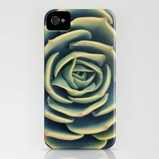 Echeveria x Imbricata Succulent Slim Case iPhone (4, 4s)