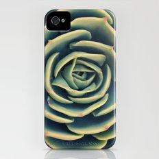 Echeveria x Imbricata Succulent iPhone (4, 4s) Slim Case