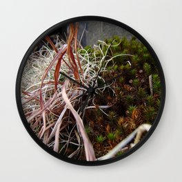 Dry Grass, Moss, and Rock Wall Clock