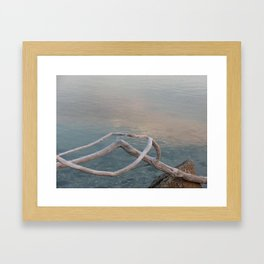 Driftwood Dawn, Florida Framed Art Print