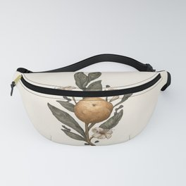 Clementine Fanny Pack