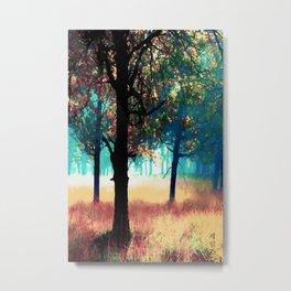 Spectra Metal Print