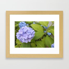 bushesofbushes Framed Art Print