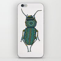 beetle iPhone & iPod Skins featuring Beetle by artworkbyemilie