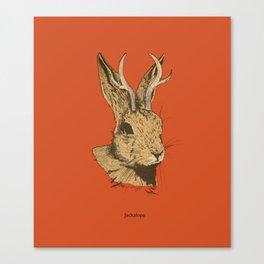 The Jackalope Canvas Print
