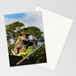 Mysterious Lady I Stationery Cards