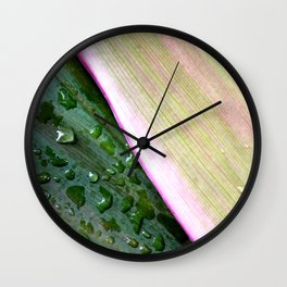 Organic Ombre Wall Clock