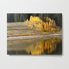 Reflecting on Autumn Metal Print