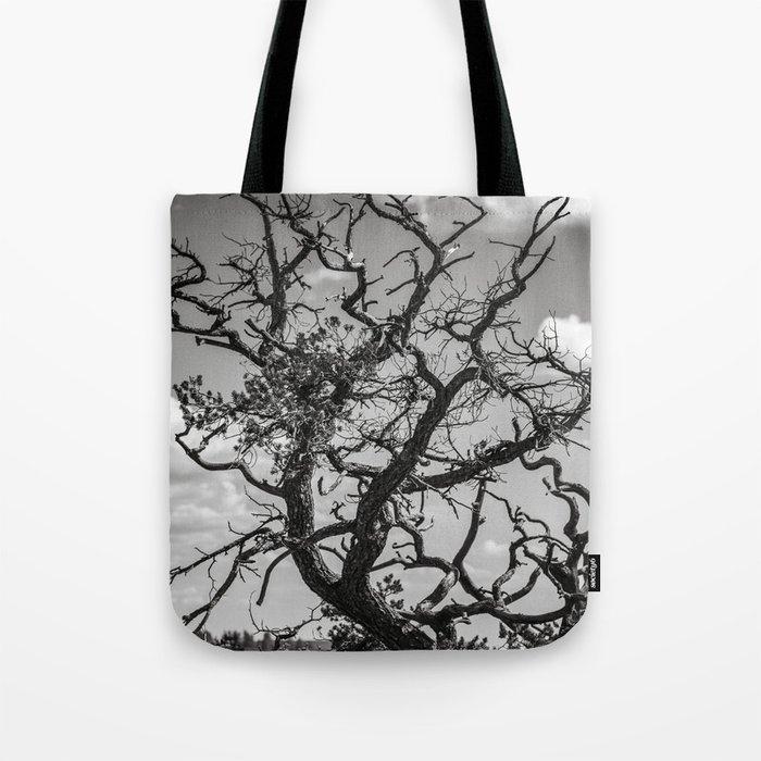 Ancient Tree, Survivor, Alive Tote Bag