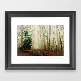 GHOST PATH Framed Art Print