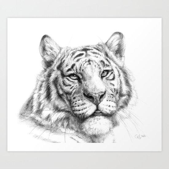Tiger G081 Art Print