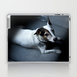 sexy spike Laptop & iPad Skin