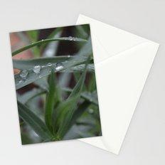 Rain Drops Stationery Cards