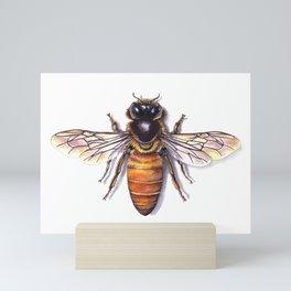 Bee Mini Art Print