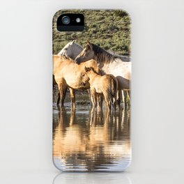 Reflection of a Mustang Family iPhone Case