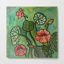 In the Garden ~ Nasturtium Metal Print