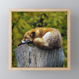 Cozy Spot Framed Mini Art Print