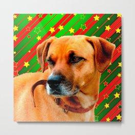 Brown Dog stars Red Yellow Green Christmas Metal Print
