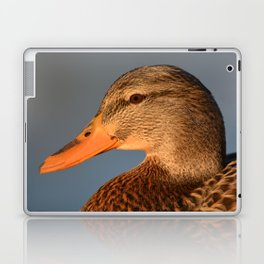 Female Duck Portrait Laptop & iPad Skin
