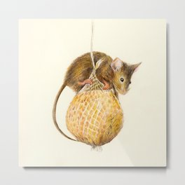 Little Thief Metal Print