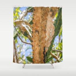 Puerto Rican Snail Shower Curtain